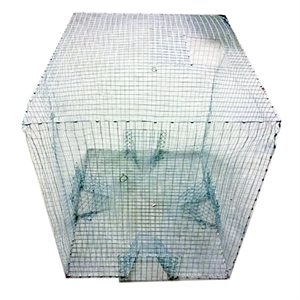Extra Large Magpie/Pigeon Live Cage Trap