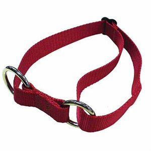 Adjustable Sled Dog Collar