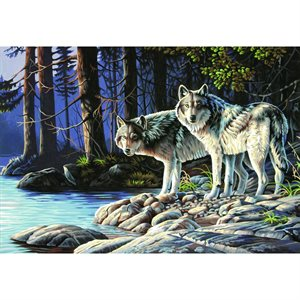 Paint By Numbers -Grey Wolves